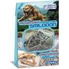 Smilodon Dino Fossili (138970)