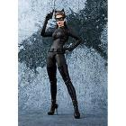 The Dark Knight Catwoman