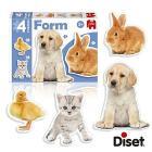 Puzzle Form photo