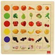 Osservazione Colori (55134)