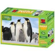 Puzzle 3D Nat Geo: Pinguini 100 pezzi