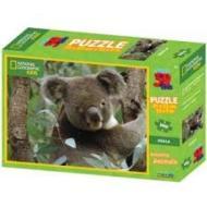 Puzzle 3D Nat Geo: Koala 100 pezzi