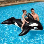 Orca cavalcabile gonfiabile
