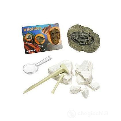 Dig & Discover - Trilobite