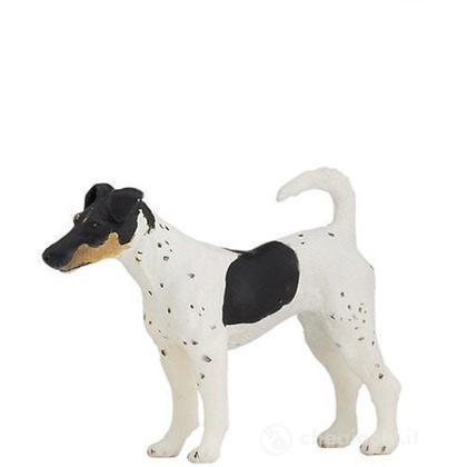 Fox Terrier (54017)