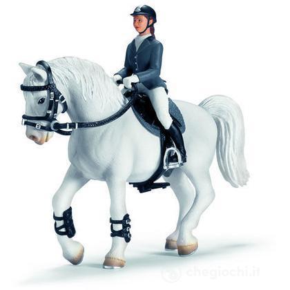 Accessori di gara di equitazione (42020)