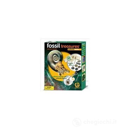 Tesori fossili