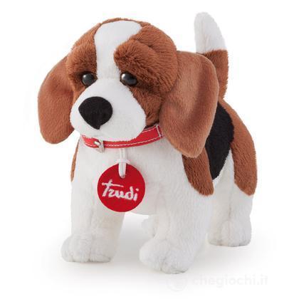 Beagle (22022)
