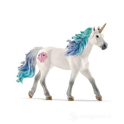 Unicorno di Mare, Stallone (2570571)