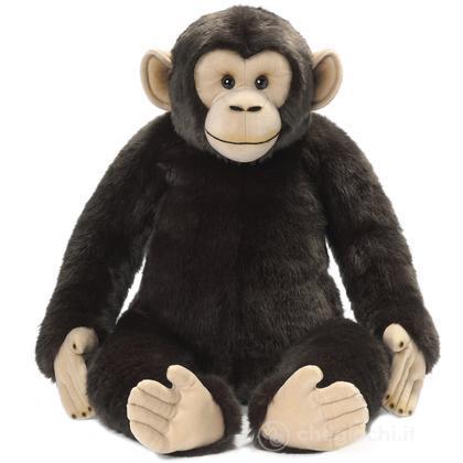 Scimpanzé jumbo