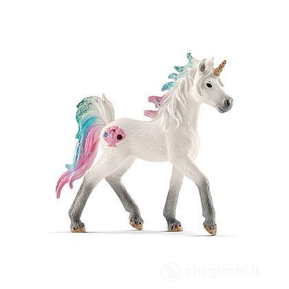 Unicorno di Mare, Puledro (2570572)