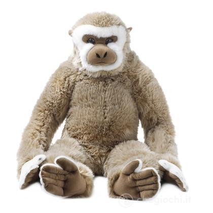 Gibbone jumbo