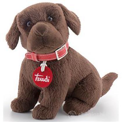 Labrador cioccolato XS (22051)