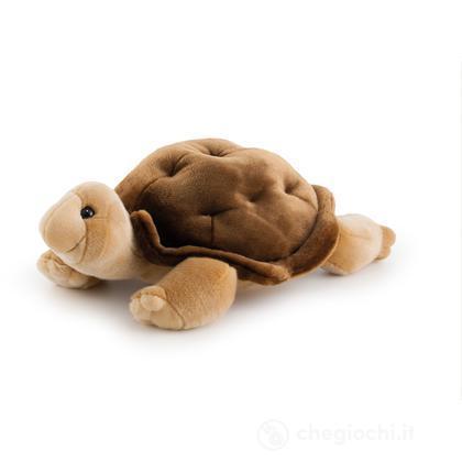 Tartaruga Romilde grande (24066)