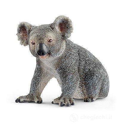 Koala (2514815)
