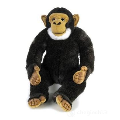Scimpanzé Grande