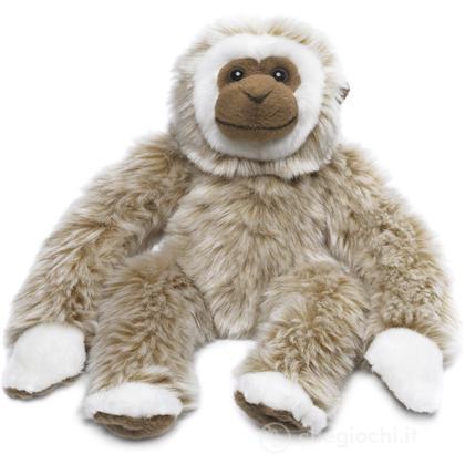 Gibbone piccolo