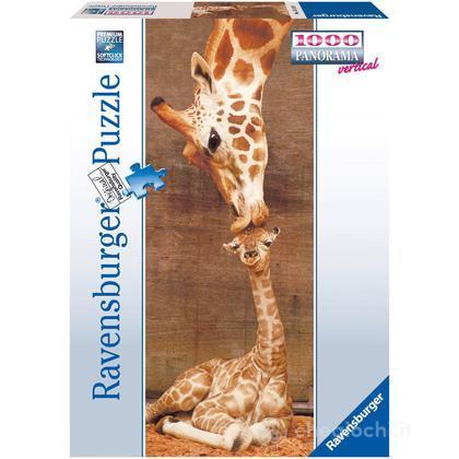 Panorama: Il primo bacio - Giraffe