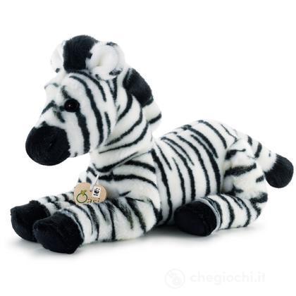 Zebra WWF Oasi medio
