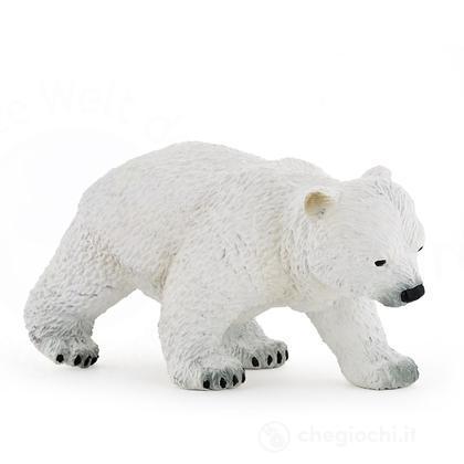 Bebè orso polare cammina (50145)
