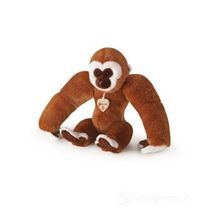 Gibbone medio (29169)