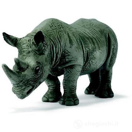 Rinoceronte africano nero (14193)