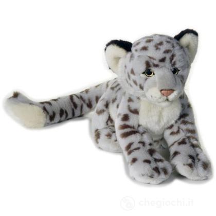 Leopardo Delle Nevi Medio