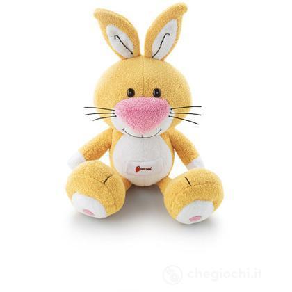 Coniglio piccolo