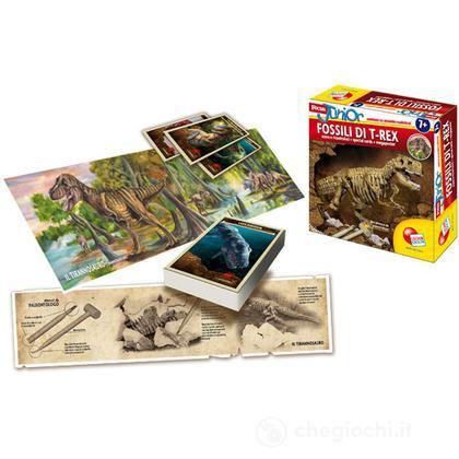 Focus Auperkit fossili di T-Rex