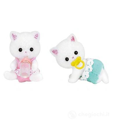 Gemelli gatti persiani (5219)