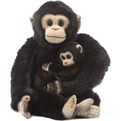 Scimpanzé madre e cucciolo