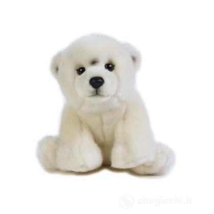 Orso Polare Baby
