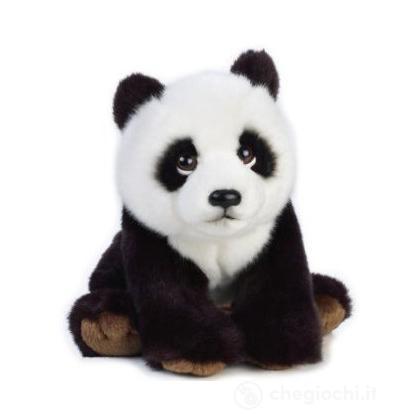Orso Panda Baby