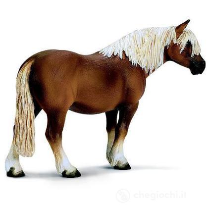 Cavallo Haflinger (13280)