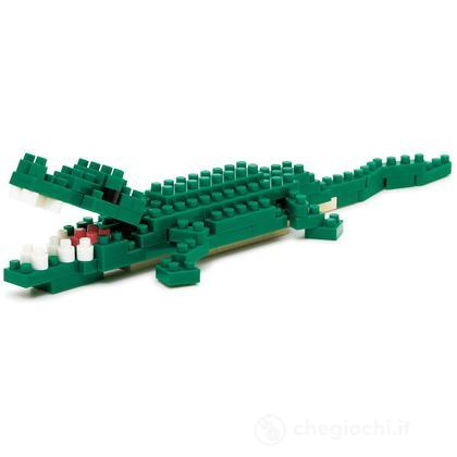 Coccodrillo Del Nilo