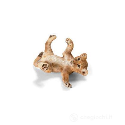 Leone cucciolo sdraiato (14376)