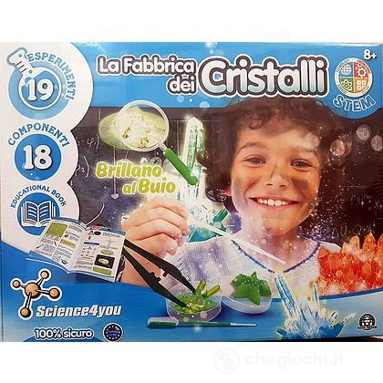 Science4you La fabbrica dei cristalli (CEN05000)