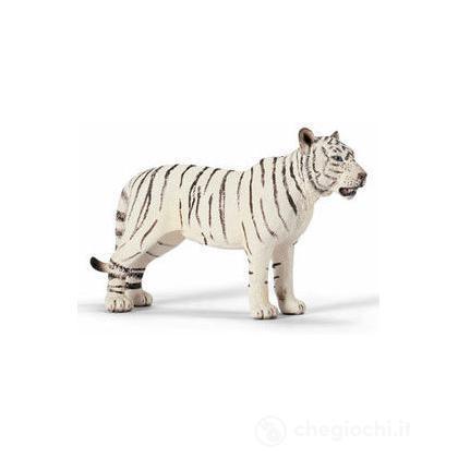 Tigre femmina bianca (14383)