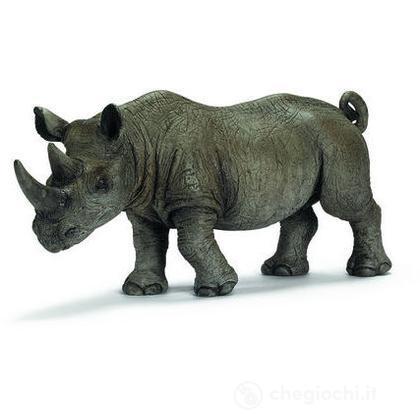Rinoceronte africano nero maschio (14394)