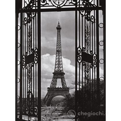 Benvenuto a Parigi (16394)