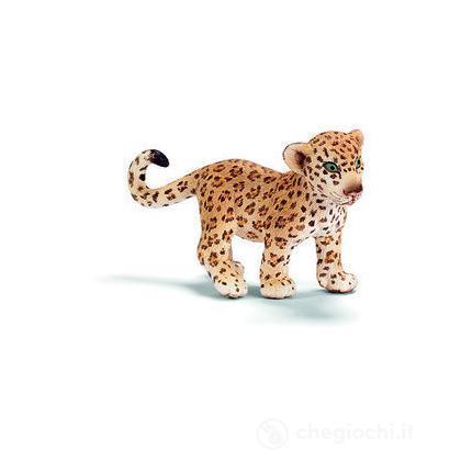 Leopardo cucciolo (14399)