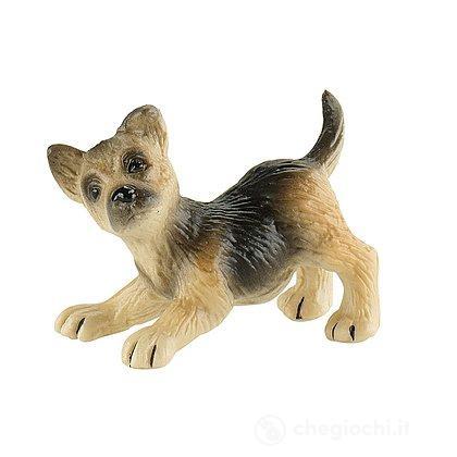 Cane - Pastore tedesco cucciolo Rocky (65429)
