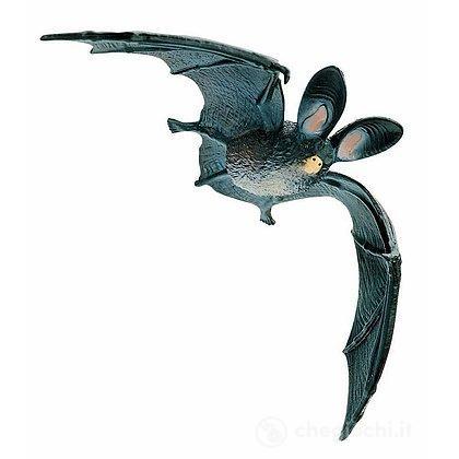 Pipistrello (68440)
