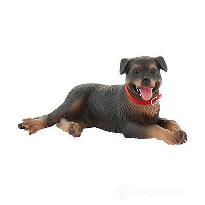 Cane - Rottweiler Fiona (65447)