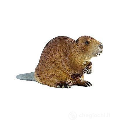 Marmotta (64456)