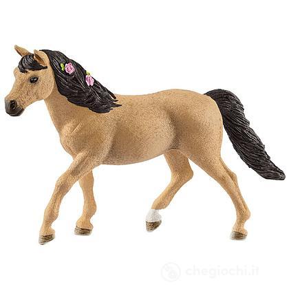 Connemara Pony Mare (13863)