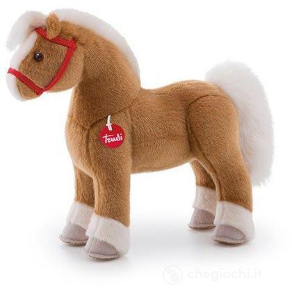 Cavallo Dustin medio (23512)