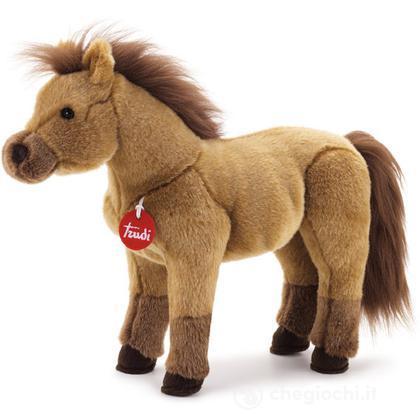 Cavallo marrone Caesar medio