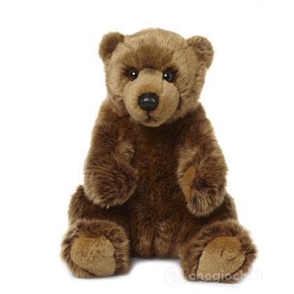 Grizzly orso seduto piccolo