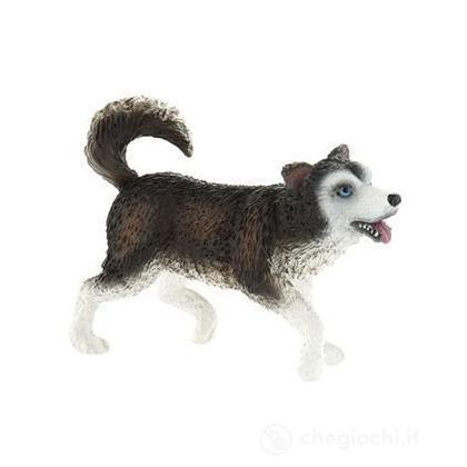 Inuit: Husky (54555)